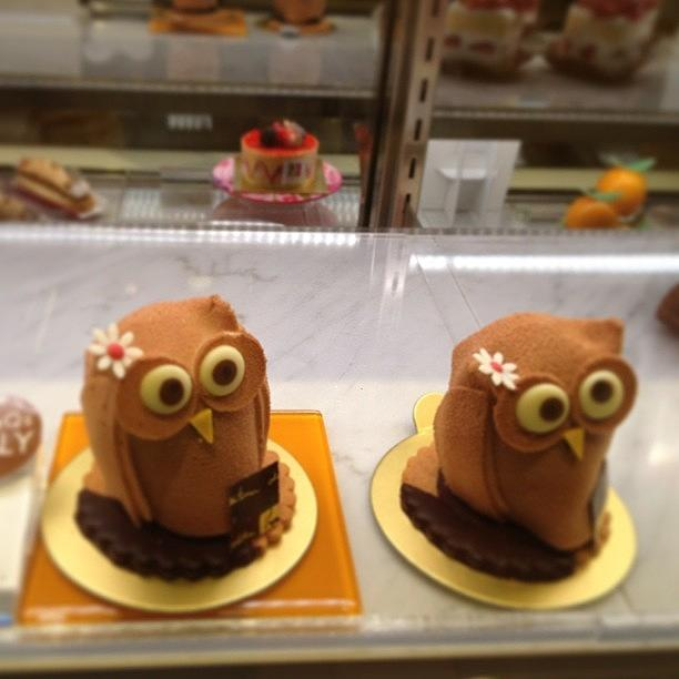 Cake Photograph - #cake by Tokyo Sanpopo
