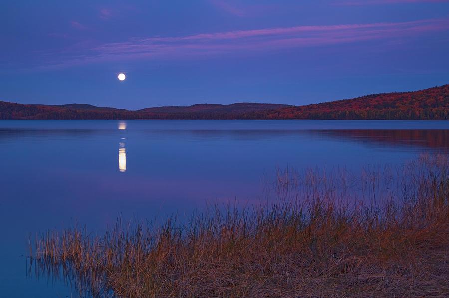 Algonquin Provincial Park Photograph - Canada, Ontario, Algonquin Provincial by Jaynes Gallery
