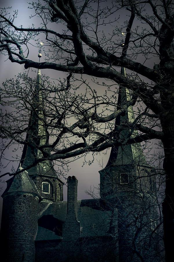Castle Photograph - Castle by Joana Kruse