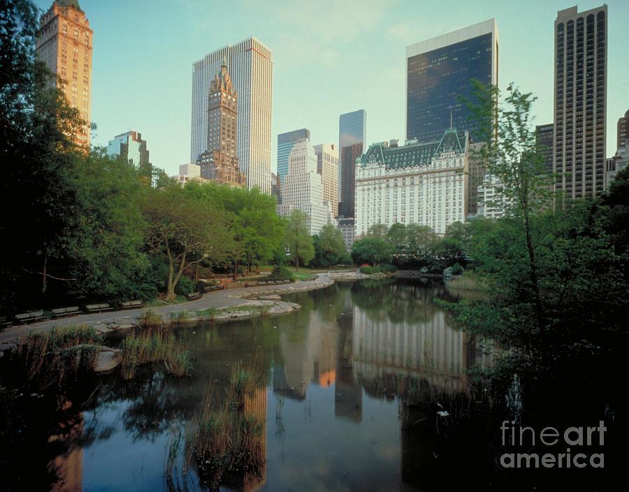 Tourism Photograph - Central Park by Rafael Macia