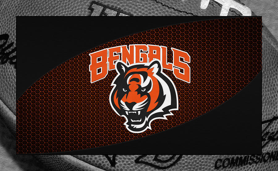 Bengals Photograph - Cincinnati Bengals by Joe Hamilton