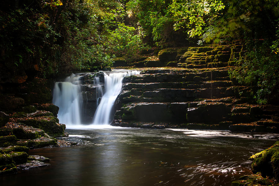 Autumn Photograph - Clare Glens by Mark Callanan