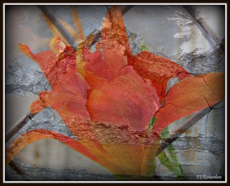 Juxtaposed Photograph - Clink by Priscilla Richardson