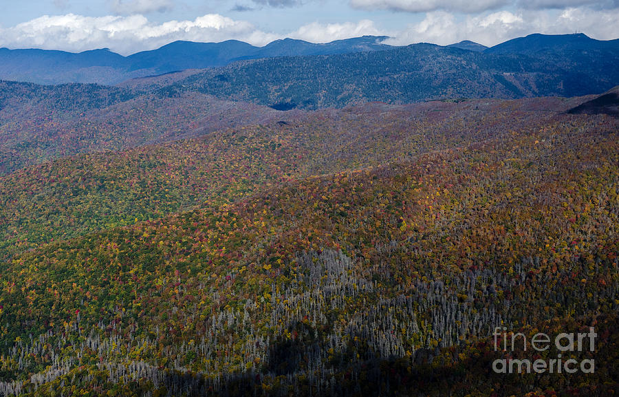 Craggy Gardens Visitor Center And Craggy Pinnacle Along The Blue Ridge Parkway Photograph By