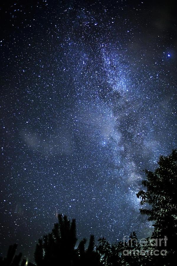 Stars Photograph - Dark Rift Of The Milky Way by Thomas R Fletcher