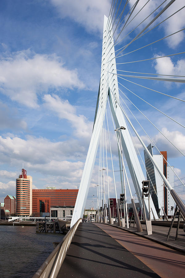Rotterdam Photograph - Erasmus Bridge In Rotterdam by Artur Bogacki