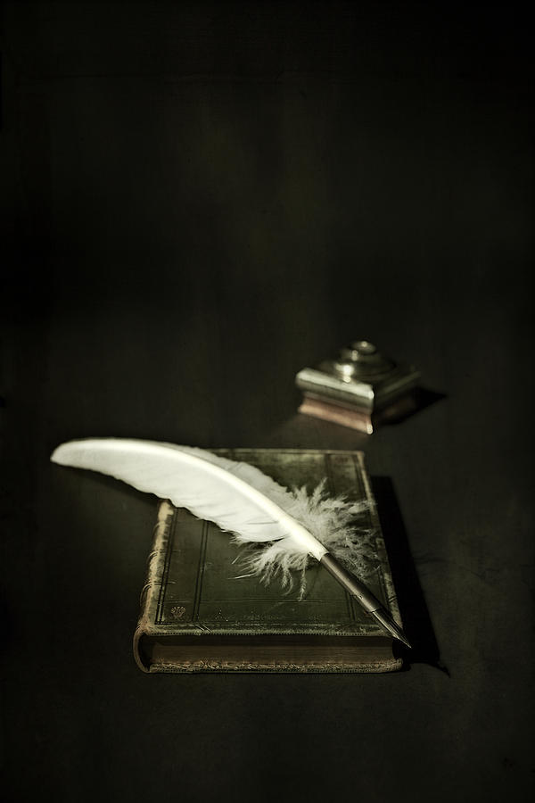 Book Photograph - Feather by Joana Kruse