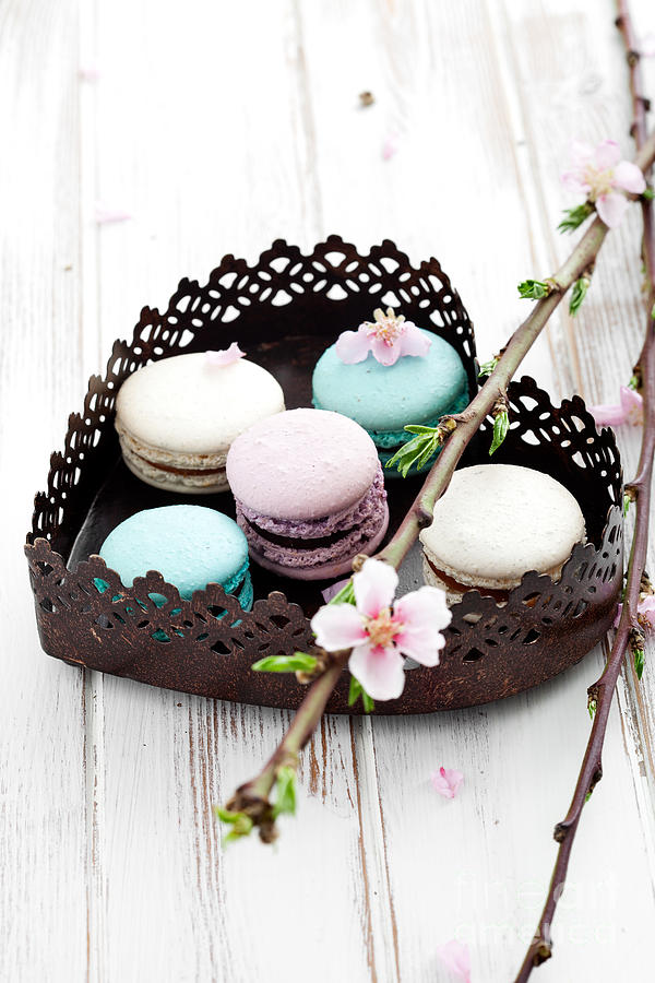 Blossom Photograph - French Macaroons by Kati Finell