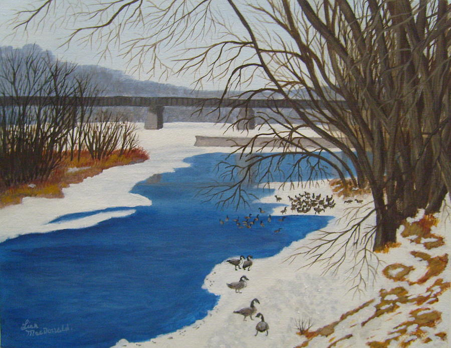 Geese Painting - Geese on the Grand River by Lisa MacDonald