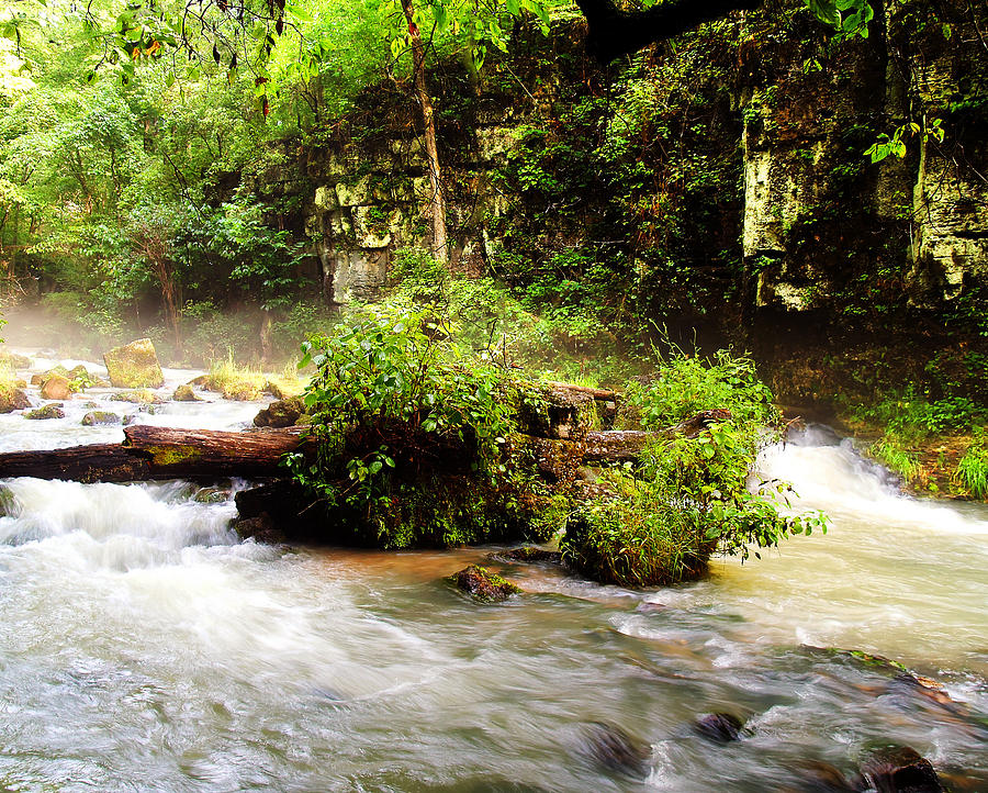 Greer Photograph - Greer Spring by Kevin Pugh