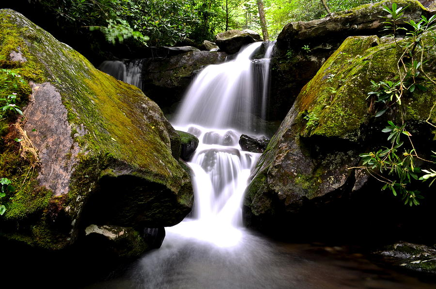 Smoky Mountains Photograph - Grotto Falls by Frozen in Time Fine Art Photography