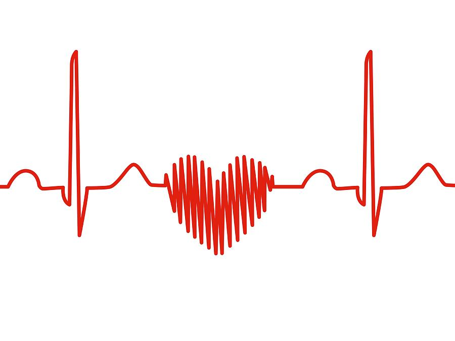Heart-shaped Ecg Trace Photograph By Alfred Pasieka