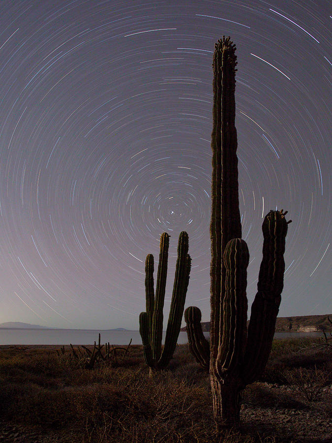 Baja Photograph - Isla Carmen, Sea Of Cortez, Baja, Mexico by Gary Luhm