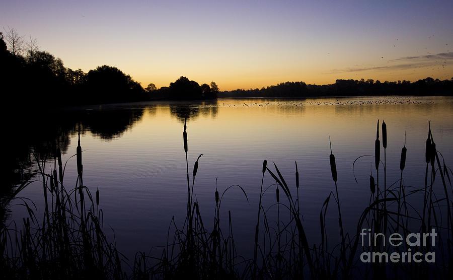 Lake Sunrise Photograph - Lake Sunrise by Darren Burroughs