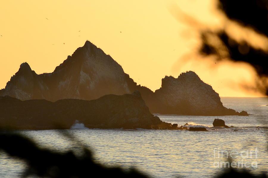 Linda Mar Beach - Northern California Photograph by Dean Ferreira