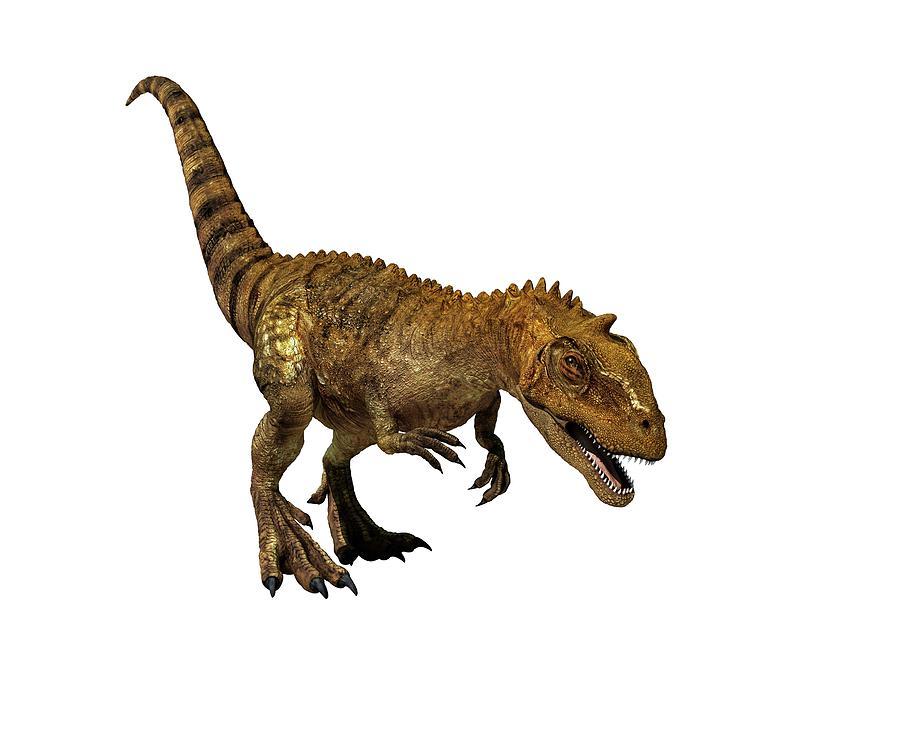 3 Dimensional Photograph - Majungasaurus Dinosaur by Mikkel Juul Jensen