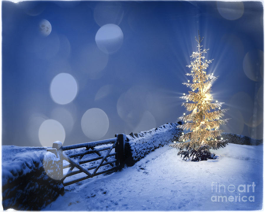 Great Britain Photograph - Merry Christmas by Edmund Nagele