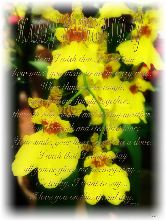 Mothers Day Poem Card Photograph - Mothers Day Card by Debra     Vatalaro