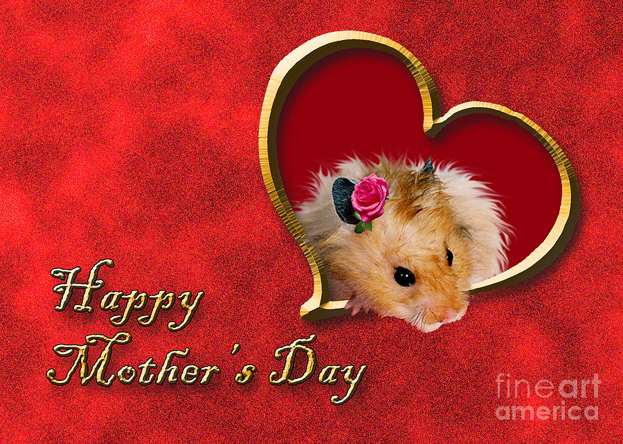 Holiday Photograph - Mothers Day Hamster by Jeanette K