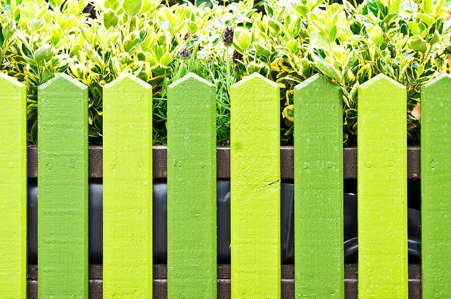 Beautiful Photograph - Picket Fence by Tom Gowanlock
