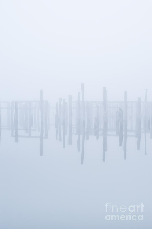 Pilings In Fog Photograph