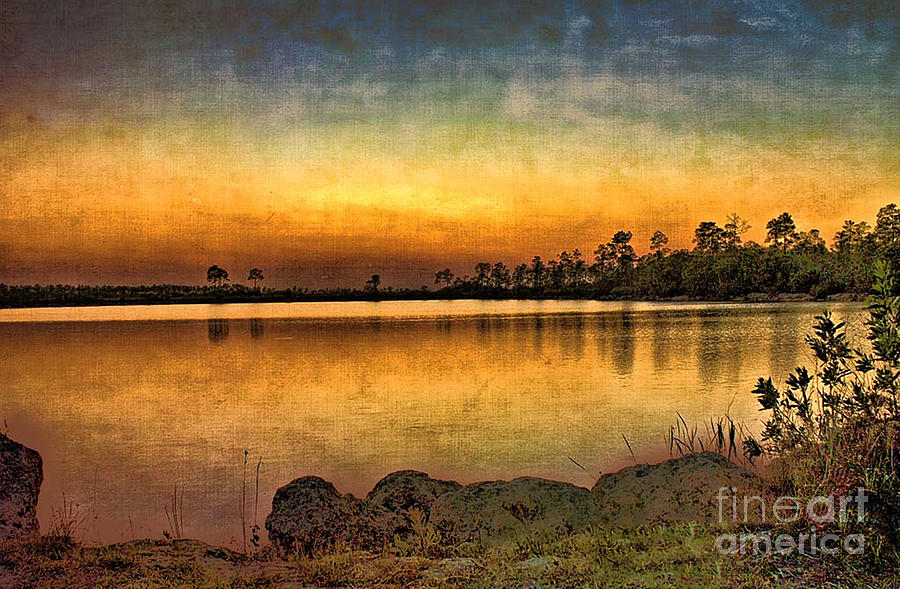 Sunset Photograph - Pine Glades Lake by Anne Rodkin
