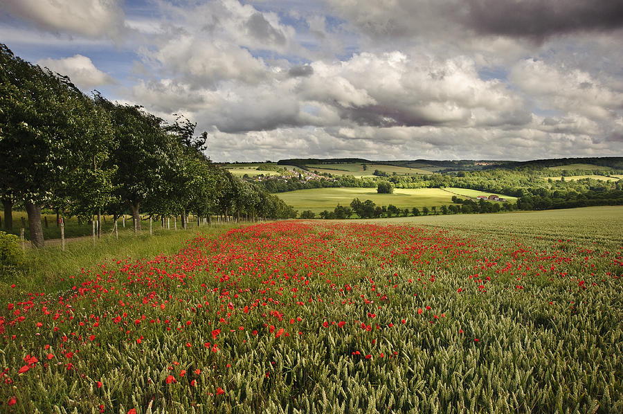 english countryside landscape old - photo #19
