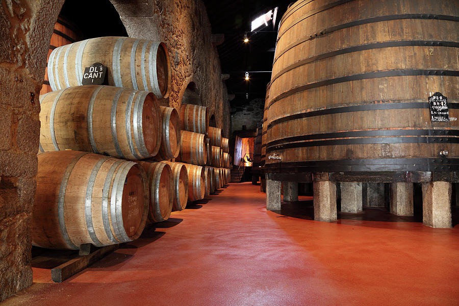 Porto Wine Cellar Photograph by Vuk8691