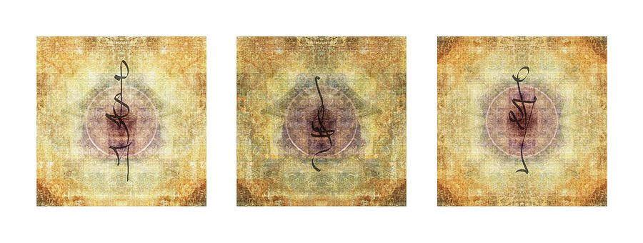 Prayer Photograph - Prayer Flag Triptych  by Carol Leigh