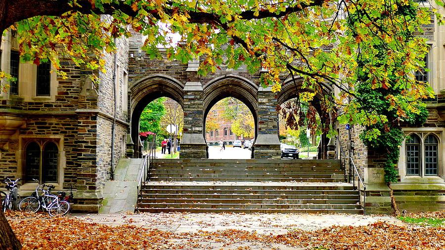 Architecture Photograph - Princeton University by Olga Breslav