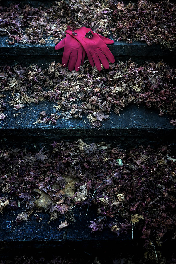 Glove Photograph - Red Gloves by Joana Kruse