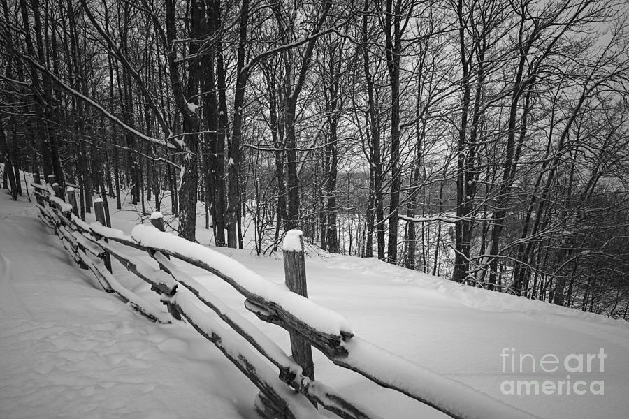Winter Photograph - Rural Winter Scene With Fence by Elena Elisseeva