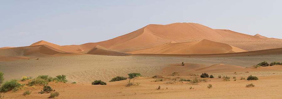 Color Image Photograph - Sand Dunes In A Desert, Sossusvlei by Panoramic Images