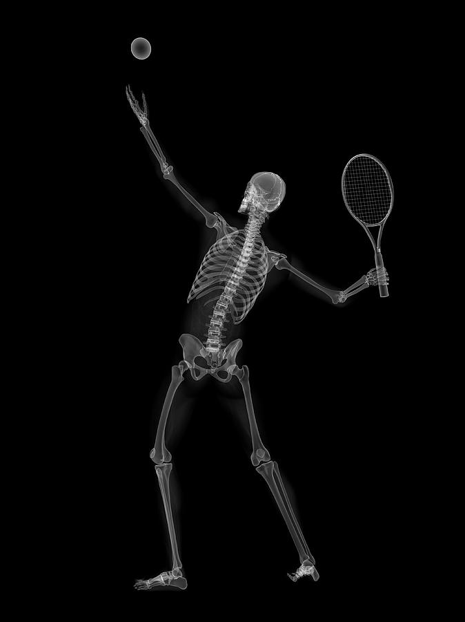 Artwork Photograph - Skeleton Playing Tennis by Sciepro/science Photo Library