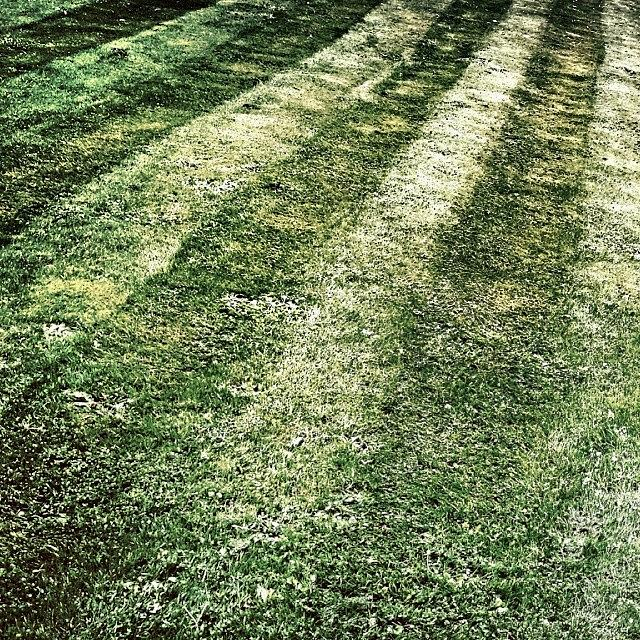 Urban Photograph - The Lawn by J Roustie