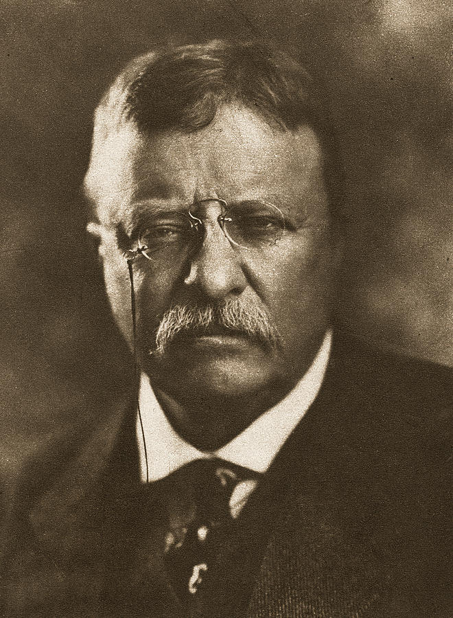 1910 Photograph - Theodore Roosevelt (1858-1919) by Granger