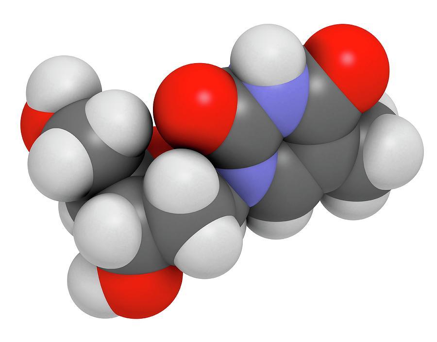 Thymidine Photograph - Thymidine Nucleoside Molecule by Molekuul