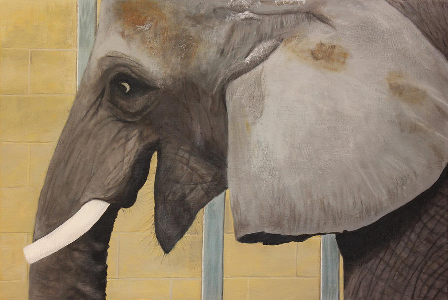 Elephant Painting - Titus by Patrick Kelly