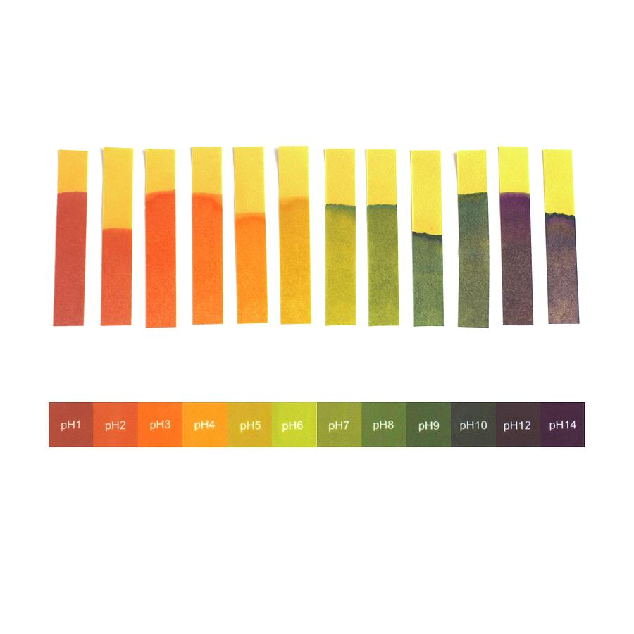 Universal indicator paper photograph by science photo library test photograph universal indicator paper by science photo library nvjuhfo Choice Image