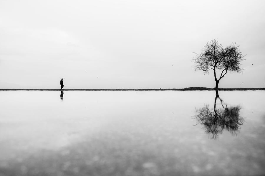 Alone Photograph - Untitled by Ali Ayer