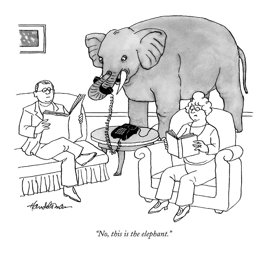 No, This Is The Elephant Drawing by J.B. Handelsman
