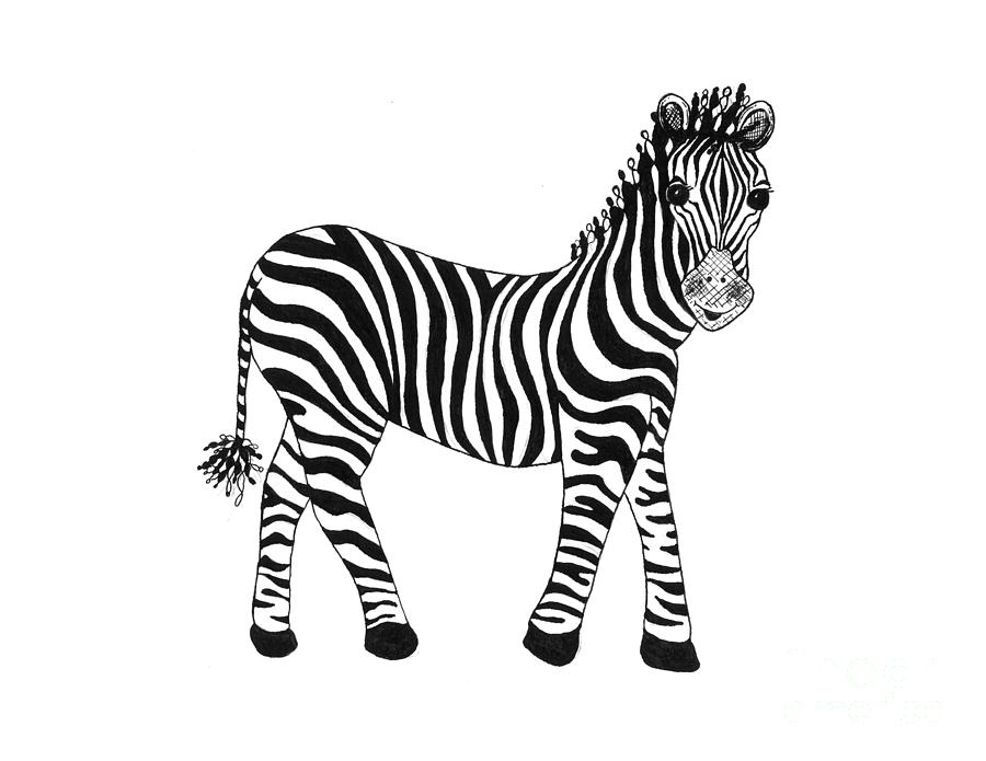 zebra drawing - photo #32