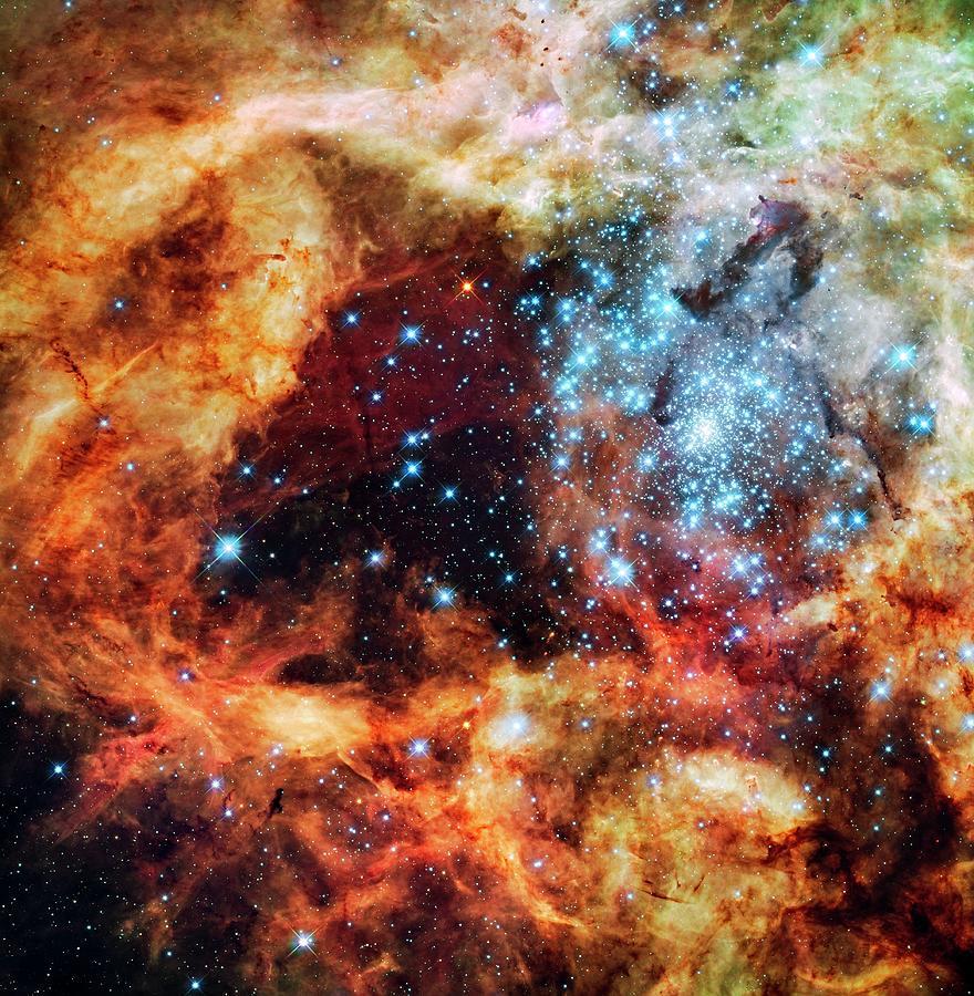 30 Doradus Photograph - 30 Doradus Star Clusters by Nasa/esa/stsci/e. Sabbi/science Photo Library