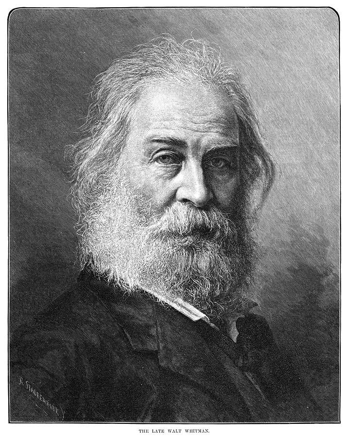 1892 Painting - Walt Whitman (1819-1892) by Granger