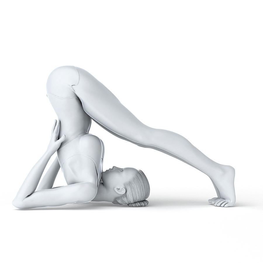 Female Photograph - Yoga by Sciepro/science Photo Library