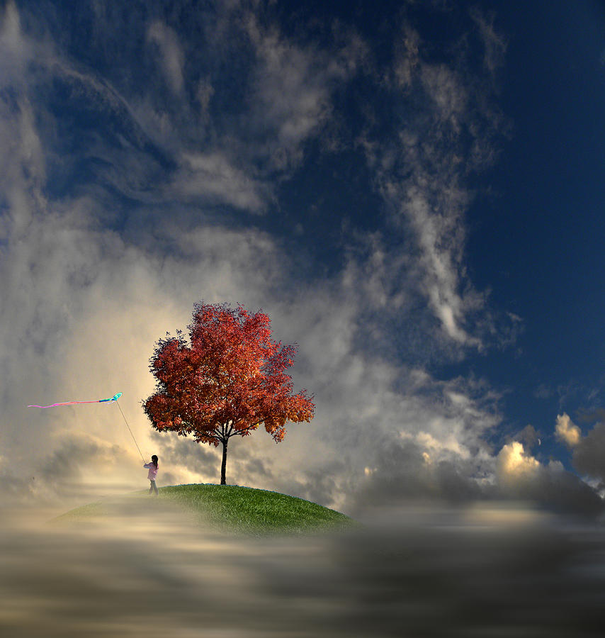 Trees Photograph - 3170 by Peter Holme III