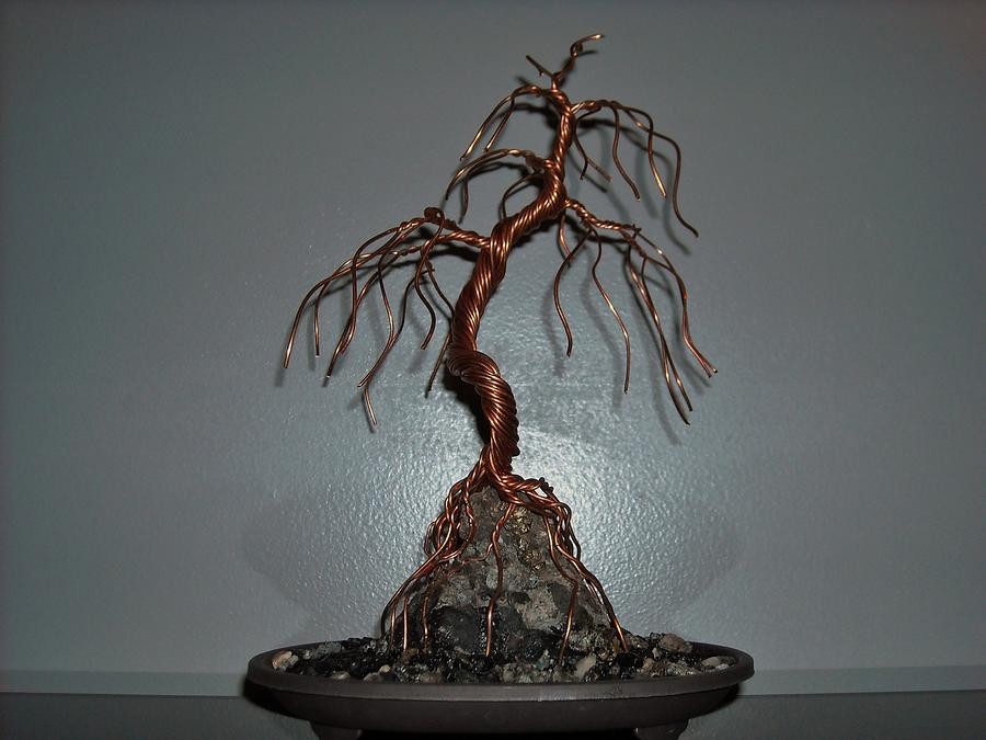 33 Root Over Rock Wire Tree Sculpture Photograph By Ricks Tree Art