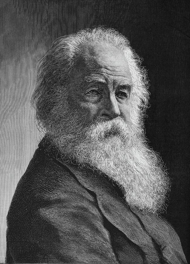1878 Painting - Walt Whitman (1819-1892) by Granger