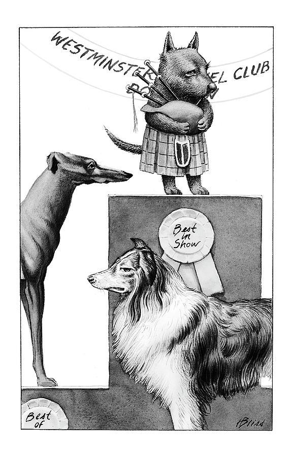 Animals Drawing - New Yorker February 14th, 2000 by Harry Bliss