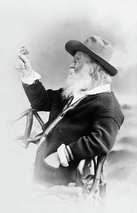 1873 Photograph - Walt Whitman (1819-1892) by Granger